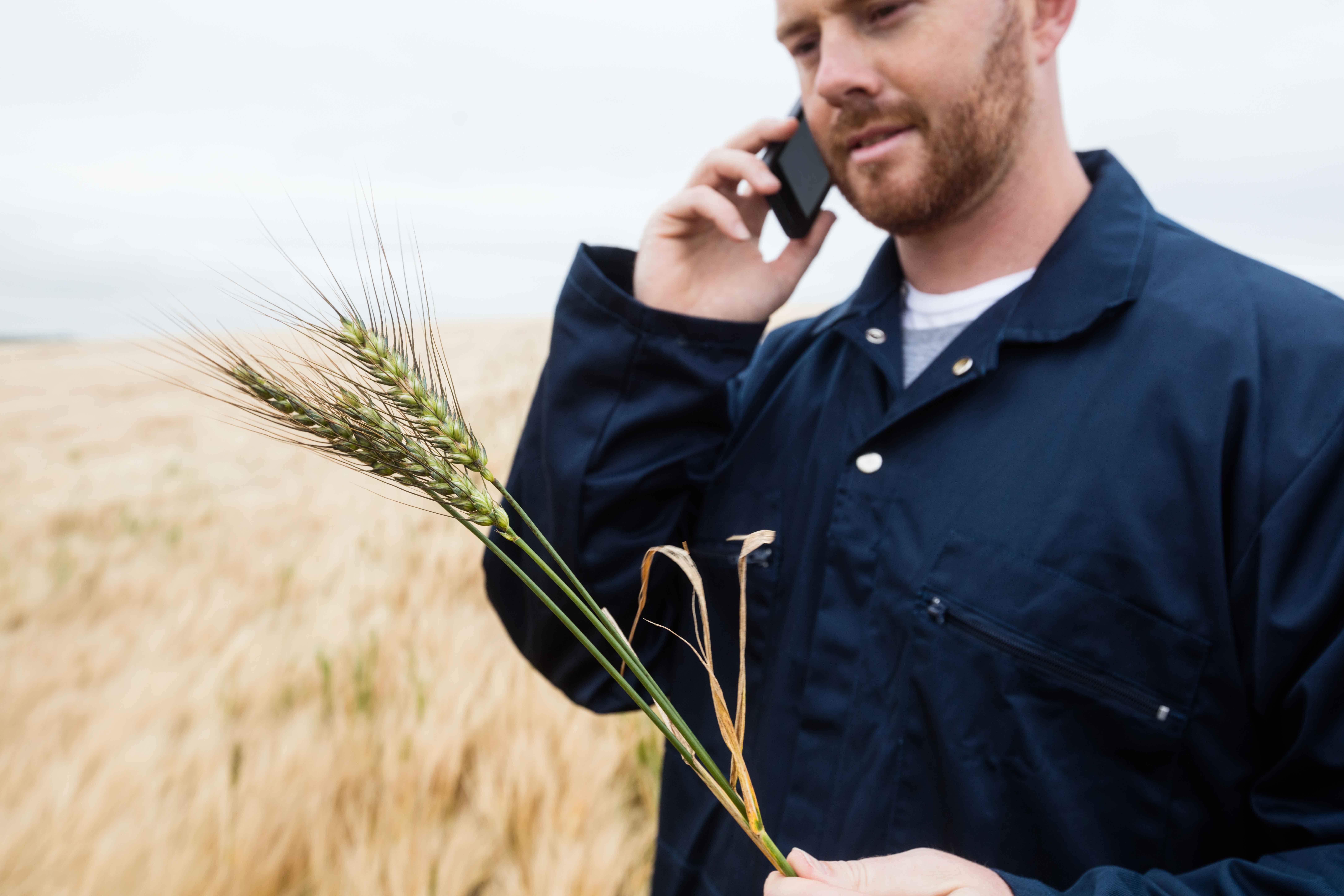Agronomist_on_phone